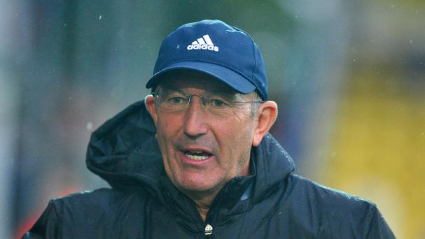 Tony Pulis, pictured, is ready to make Kane Wilson the Premier League's first 21st Century boy