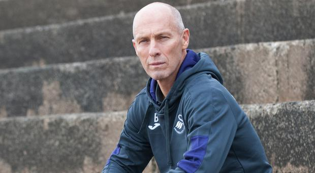 New manager Bob Bradley says he has settled in at Swansea quickly ahead of his first game at Arsenal on Saturday