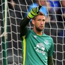 Everton goalkeeper Maarten Stekelenburg, pictured, has been praised by manager Ronald Koeman