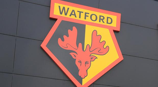 Watford are the subject of allegations in a Daily Telegraph report