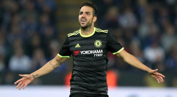 Cesc Fabregas has not been a regular starter under Antonio Conte