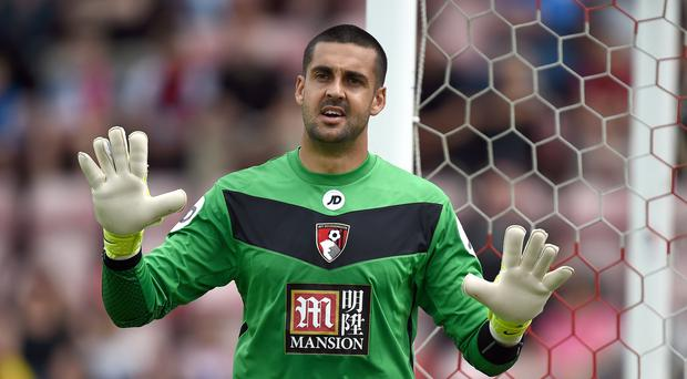 Adam Federici was a safe pair of hands at Stoke on Saturday