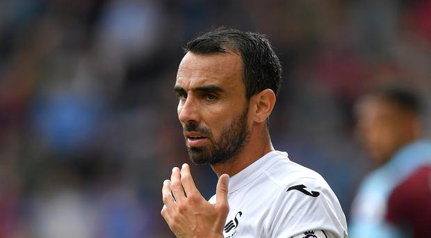 Swansea skipper Leon Britton believes the squad has the necessary fighting spirit to survive in the Premier League