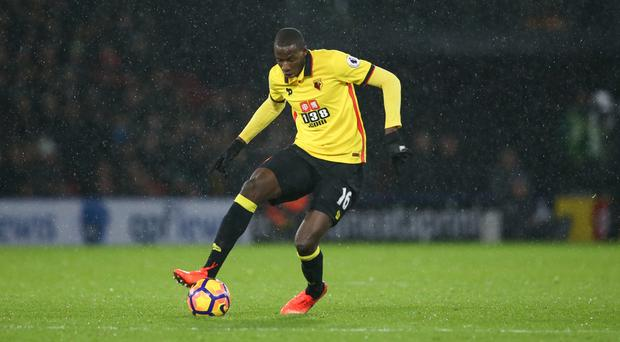 Watford's Abdoulaye Doucoure says the pressure will be on Tottenham on Saturday
