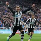 Newcastle's Ayoze Perez celebrates as his side are promoted