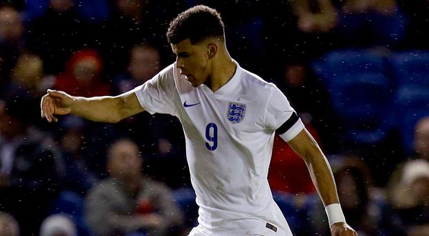 Dominic Solanke has been linked with a move to Celtic