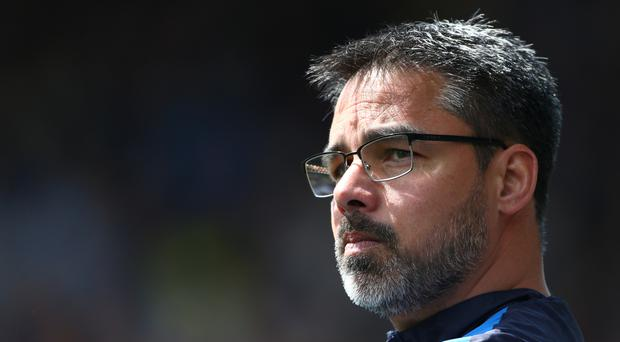 David Wagner led Huddersfield to promotion to the Premier League for the first time