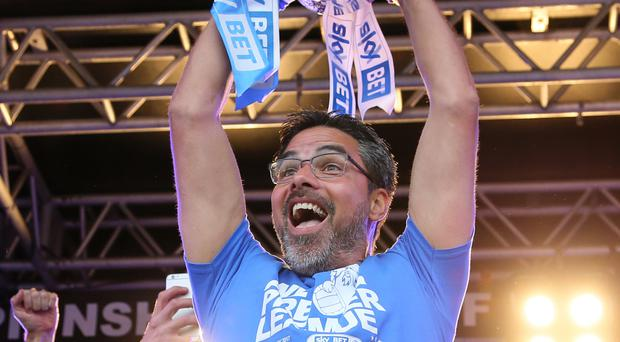 David Wagner will lead Huddersfield into the Premier League next season