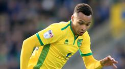 Jacob Murphy is Newcastle's third summer signing
