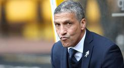 Brighton manager Chris Hughton has made his fifth summer signing