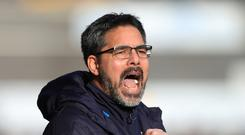 David Wagner's Huddersfield face Newcastle on Sunday in what will be the Terriers' first ever Premier League home match.