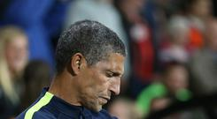 Newcastle boss Rafael Benitez will go head-to-head with Brighton's Chris Hughton (pictured) on Sunday