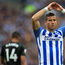 Tomer Hemed netted the winner for Brighton