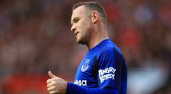 Wayne Rooney could feature in an Everton-themed Angry Birds game after the club signed a sponsorship deal with software developer Rovio