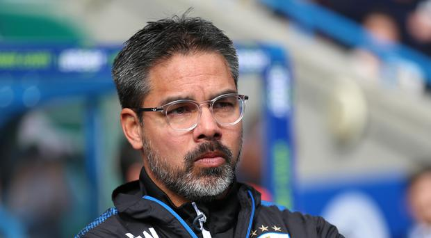 David Wagner said he was not interested in the Leicester vacancy