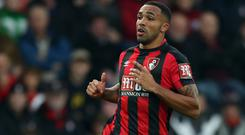Callum Wilson was Bournemouth's man of the match