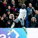 Roy Hodgson feels vindicated by Oumar Niasse's two-match ban for diving
