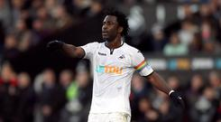Swansea striker Wilfried Bony comes up against old club Manchester City after scoring in his last two Premier League games.