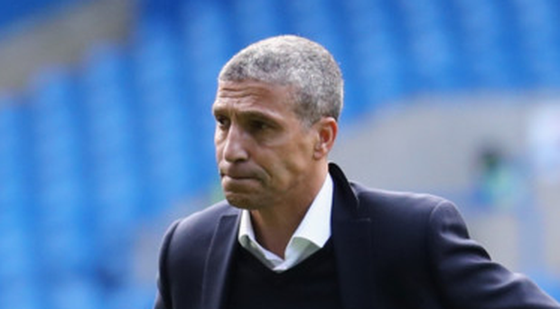Chris Hughton, Manager of Brighton and Hove Albion Photo: Getty