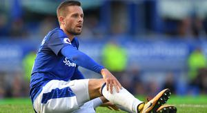 Everton midfielder Gylfi Sigurdsson could miss the rest of the season and this summer's World Cup.
