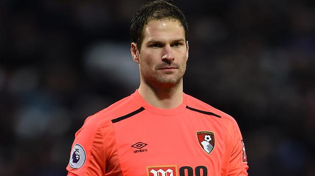 begovic - photo #29