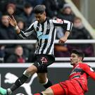 Newcastle United v Huddersfield Town – Premier League – St James' Park