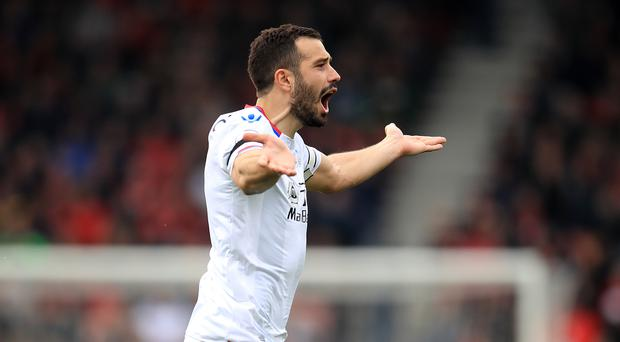 Luka Milivojevic has been one of Palace's best performers this season