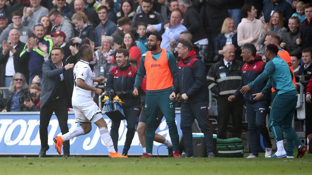 Swansea striker Jordan Ayew celebrates
