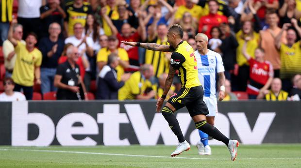 Roberto Pereyra celebrates his opener for Watford (Nigel French/PA)
