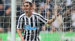 Newcastle new boy Miguel Almiron enjoyed an impressive home debut against Huddersfield (Owen Humphreys/PA)