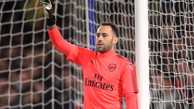 Napoli goalkeeper David Ospina suffered concussion against Udinese (Mike Egerton/PA Images)