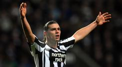 Andy Carroll is ready to make a second debut for Newcastle against Brighton (Owen Humphreys/PA)