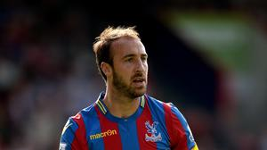 Bournemouth's Glenn Murray proved himself in the Premier League with Crystal Palace