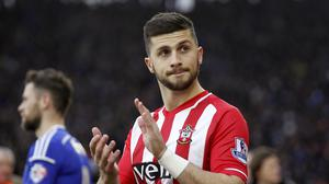 Southampton's Shane Long is facing up to six weeks out of action