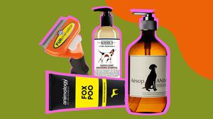 There are plenty of products around for keeping your pooch groomed