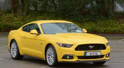 Real character: The Ford Mustang V8 which has finally arrived this side of the Atlantic in right-hand drive. Photo: John Sheehan Photography