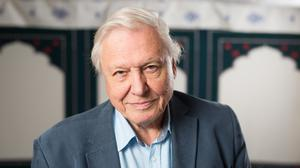 Sir David revealed he fell around 40ft during the incident in the Lake District