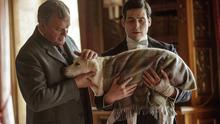 Hugh Bonneville says his Downton Abbey character's dog is not being killed off because she is called Isis