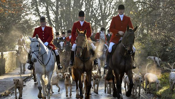 Celebrities are opposing attempts to water down legislation against foxhunting