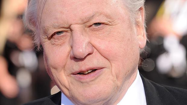 Sir David Attenborough - a former controller of BBC2 - said it was 'perfectly proper' for the BBC to arrange an open letter