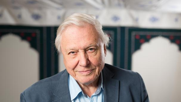 Sir David Attenborough was speaking after a screening of an episode of his latest series Great Barrier Reef
