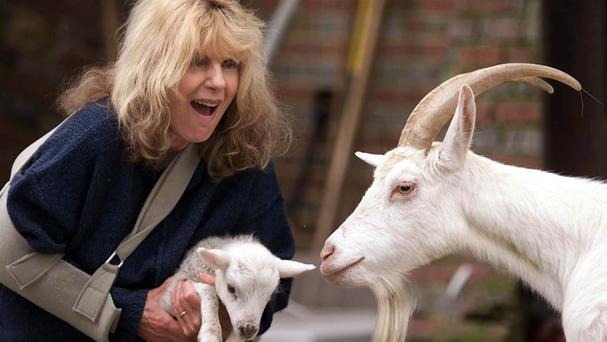 Carla Lane's sitcoms, which included The Liver Birds, Butterflies and Bread, established her as one of the country's best-loved writers