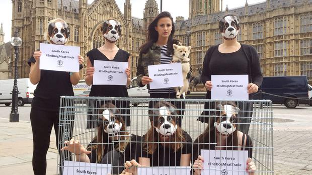 Lucy Watson (top second right) with her dog Digby joins campaigners outside Parliament urging Boris Johnson to encourage South Korea to end its dog meat trade