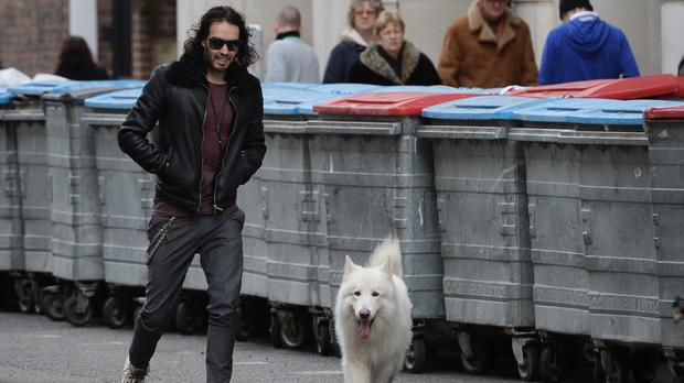 Russell Brand says the secret to happiness is throwing outsize sticks to his dog