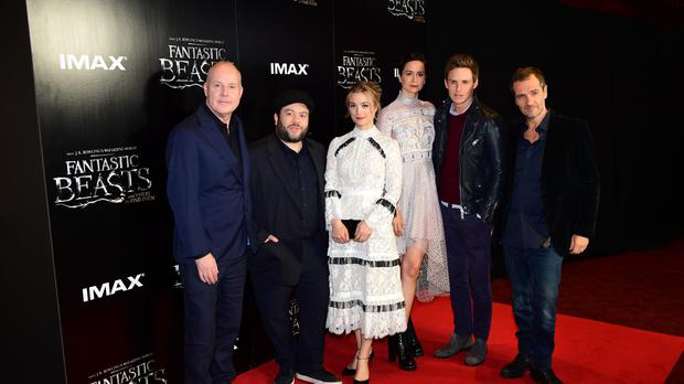 Fantastic Beasts Cast Surprised By Jk Rowling S Plans For Four More Films Independent Ie