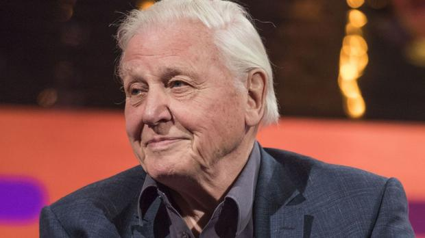 Sir David Attenborough narrates the ratings hit Planet Earth II