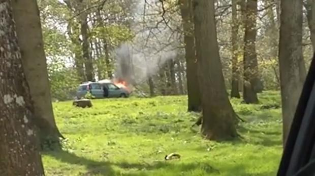 Family car explodes in lion enclosure (Generated thumbnail)