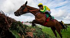 Synopsis and Davy Russell jumping during the Cheesestrings Mares Novice Chase. Listowel. Photo: Patrick McCann/Racing Post 09.09.2018
