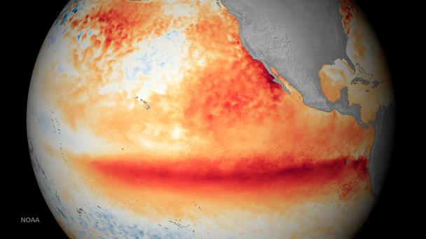 This image shows the sea temperature change in the Pacific Ocean for October 2015, where orange-red colors are above normal temperatures and are indicative of El Niño. Photo: Getty Images