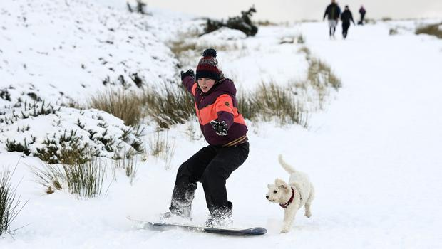 A snowboarder and their dog at the Wicklow Gap. Photo: Garry O'Neill